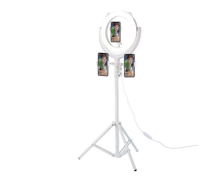 Remax CK-01 Selfie Led Ring Light Φωτισμός Led με Βάση για 3 Smartphone - White